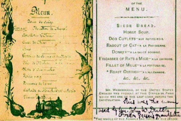 Karácsonyi menü: elefántleves, macskaragu, kengurupörkölt