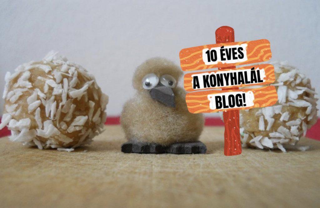 10 eves a Konyhalal blog